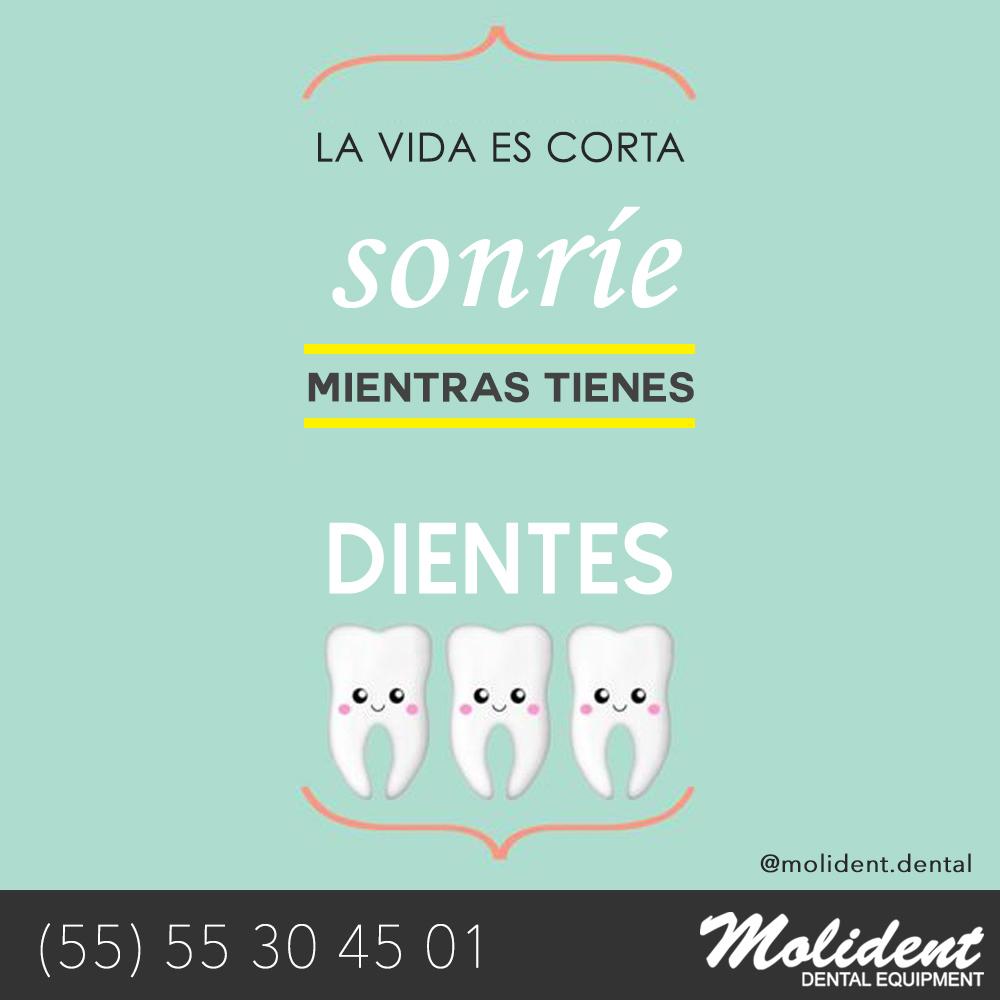 La Vida es Corta, Sonríe Mientras Tienes Dientes